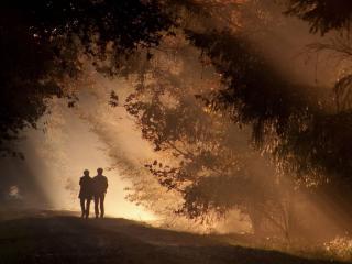 обои Двое в лесу фото