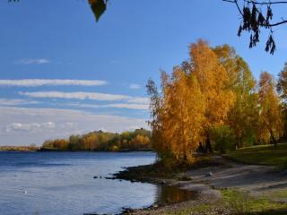 обои Осенний городской пруд фото