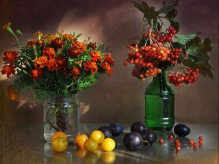 обои Осенняя композиция фото