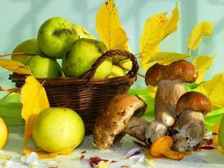 обои Грибы,   яблоки и осень фото