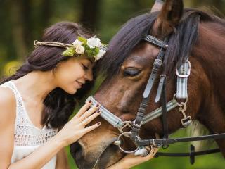 обои Девушка и лошадь фото