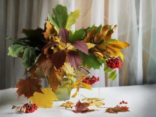 обои для рабочего стола: Осень в вазе