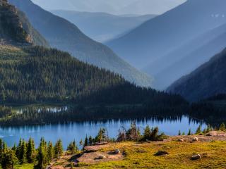 обои Река хвойной долины фото