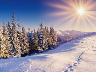 обои Зимний диск солнца над снежной горой фото