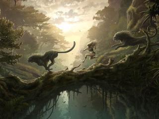 обои Салки со львами фото