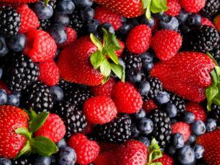 обои Разнообразие сочных ягод фото
