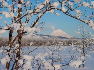обои Камчатская зима фото