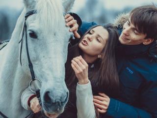 обои Белый конь и люди фото