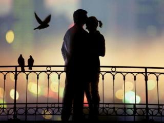 обои Любовь и голуби фото