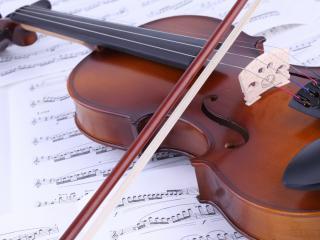 обои Безупречная скрипка фото