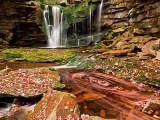 обои Осенний водопад фото