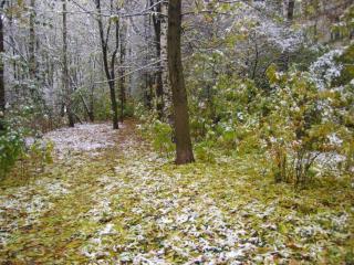 обои для рабочего стола: Снег выпал только в декабре