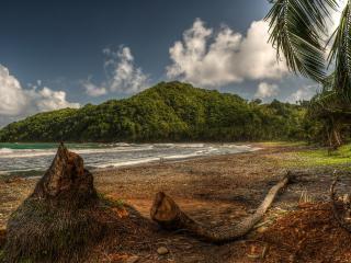 обои Отлив на тропическом острове фото