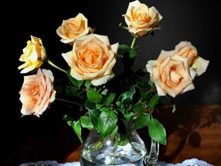 обои Кремовые розы в кувшине фото