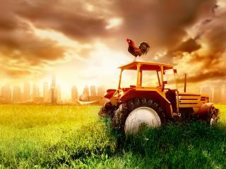 обои Ржавый брошенный трактор на поле за городом фото