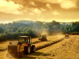 обои Сельскохозяйственная обработка поля фото
