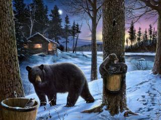 обои Медведи в зимнюю ночь фото