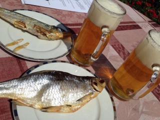 обои Пиво с лещом фото
