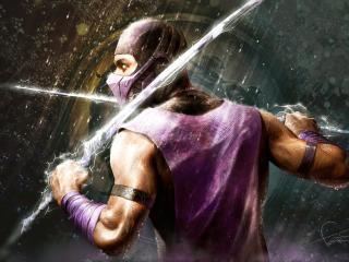обои Саб-Зиро с двумя мечами наперевес фото
