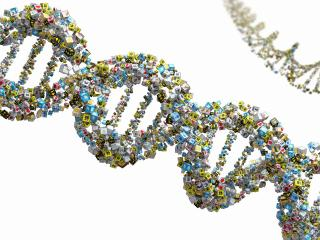 обои Молекула ДНК из кубиков фото