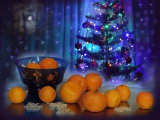 обои Апельсины и ёлка фото