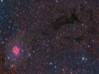 обои для рабочего стола: Туманность Кокон в созвездии Лебедя