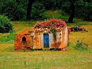 обои Заброшенный дом в Алентежу. Португалия фото