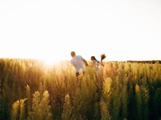 обои для рабочего стола: Влюблённая пара в цветосном поле