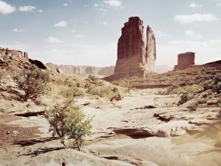 обои Пустынный каньон Америки фото