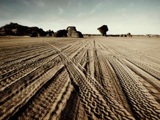 обои Следы от машин в пустыне фото