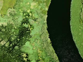 обои Исток Нила сверху фото