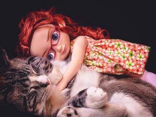 обои Кукла и кот фото