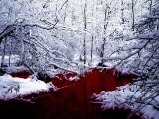 обои Красное озеро фото