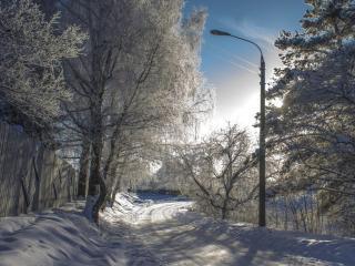 обои Деревенская дорога фото