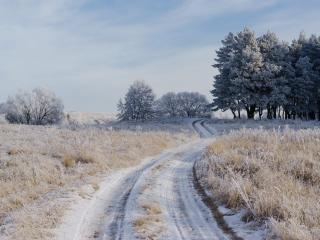 обои для рабочего стола: Дорога в декабре
