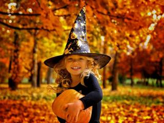 обои Осенний Хэллуин фото