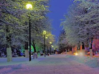 обои Зимние городские фонари фото