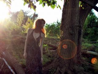 обои В лесу одна фото