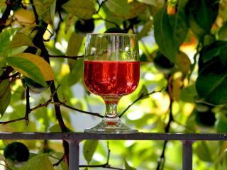обои Вино Тамани фото