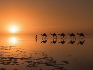 обои Пустыни фото
