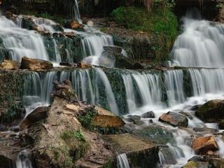 обои Лесной каскадный водопад фото