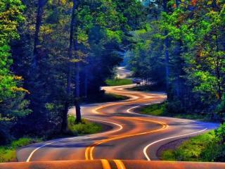 обои для рабочего стола: Извилистая дорога в лесу