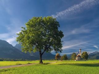 обои для рабочего стола: Дерево в горной долине