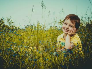 обои Мальчик в траве фото