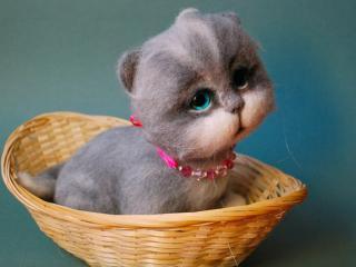обои Печальный котёнок фото