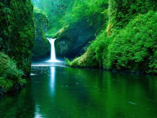 обои для рабочего стола: Водопад в горном лесу
