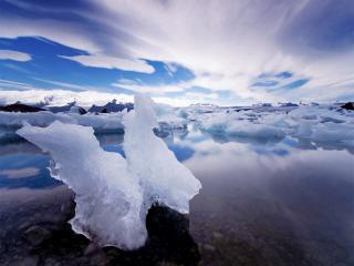 обои Две льдины тают фото