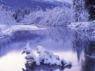 обои Ветка со снегом посреди ручья фото