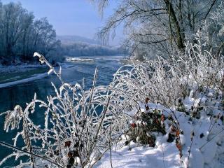 обои Река зимой фото
