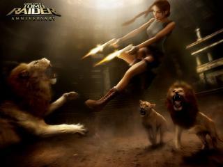 обои Tomb Raider: Anniversary - Лара борется со львами фото